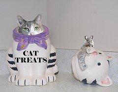 kitty-treats-photo-by-frog-pond