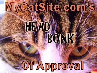 In Cat Language, Head Bonks Mean Love!